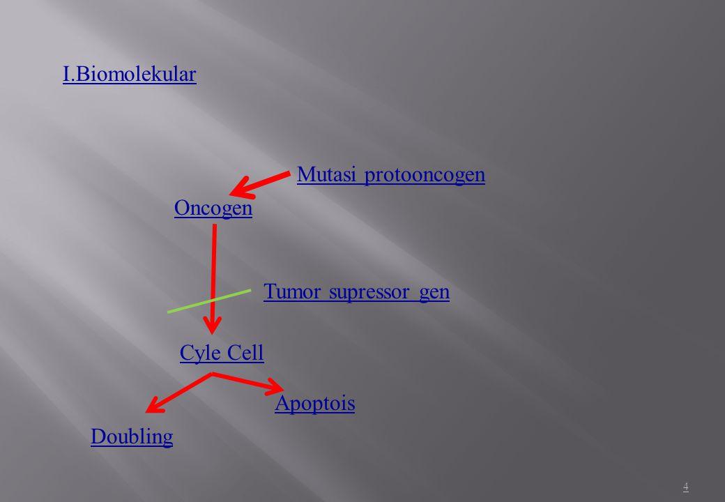I.Biomolekular Mutasi protooncogen Oncogen Tumor supressor gen Cyle Cell Apoptois Doubling