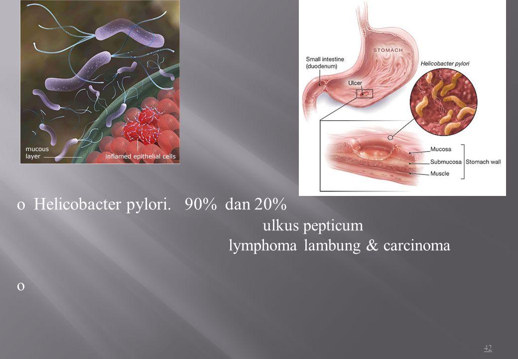 Helicobacter pylori. 90% dan 20% ulkus pepticum