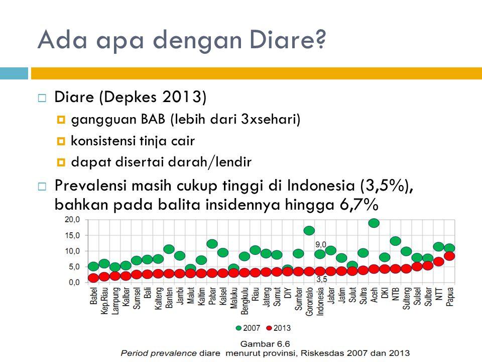 Ada apa dengan Diare Diare (Depkes 2013)