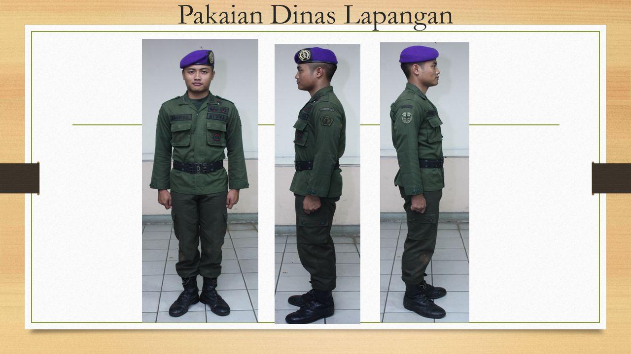 Pakaian Dinas Lapangan