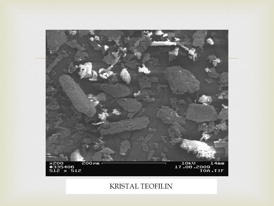 KRISTAL TEOFILIN