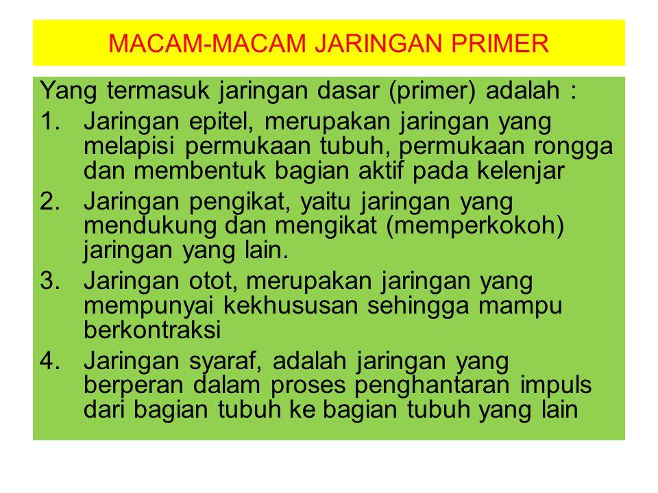 MACAM-MACAM JARINGAN PRIMER