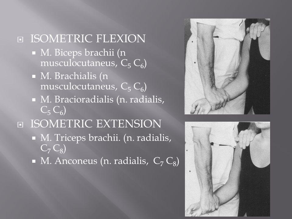 ISOMETRIC FLEXION ISOMETRIC EXTENSION