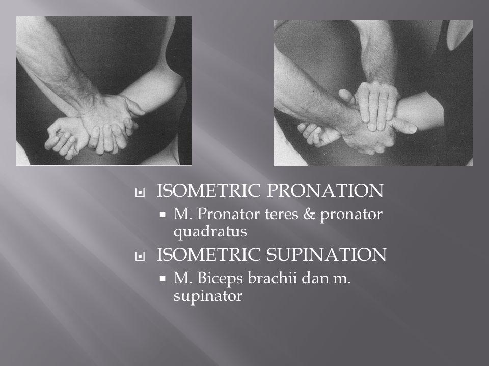 ISOMETRIC PRONATION ISOMETRIC SUPINATION