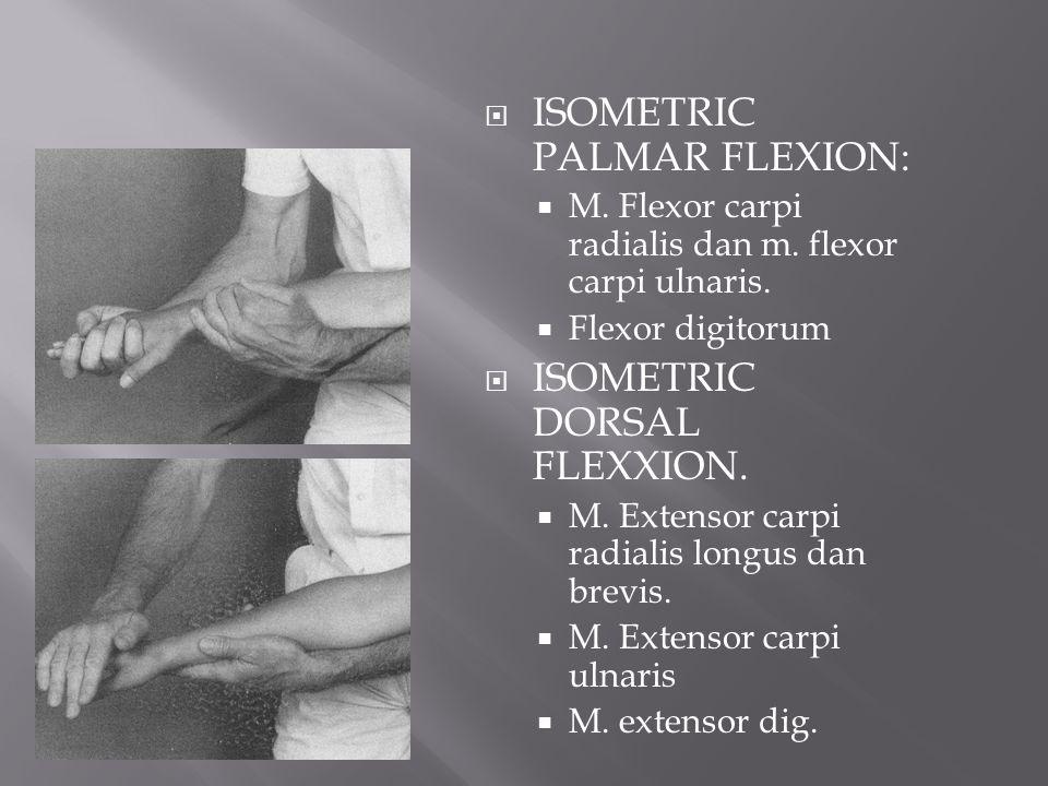 ISOMETRIC PALMAR FLEXION: