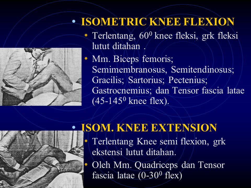 ISOMETRIC KNEE FLEXION