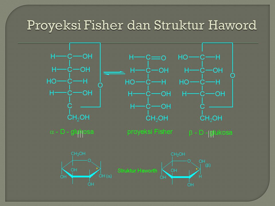 Proyeksi Fisher dan Struktur Haword