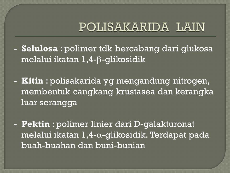 POLISAKARIDA LAIN