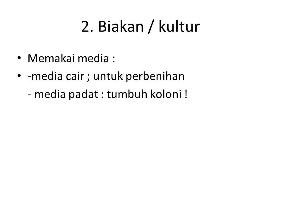 2. Biakan / kultur Memakai media : -media cair ; untuk perbenihan