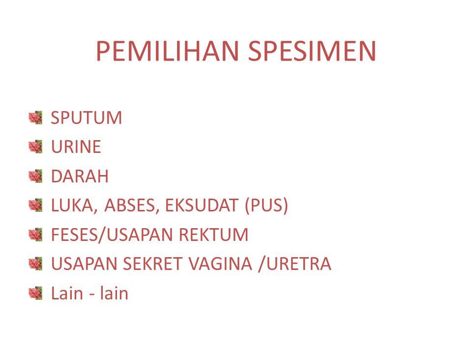 PEMILIHAN SPESIMEN SPUTUM URINE DARAH LUKA, ABSES, EKSUDAT (PUS)