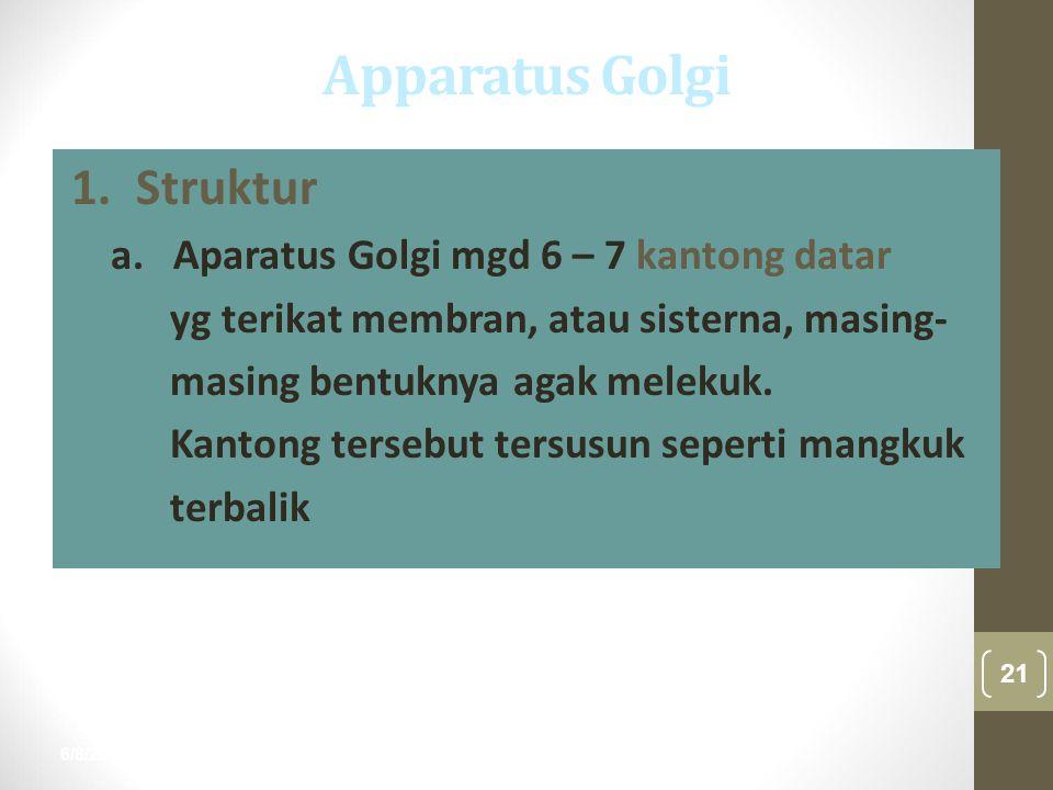 Apparatus Golgi 1. Struktur a. Aparatus Golgi mgd 6 – 7 kantong datar