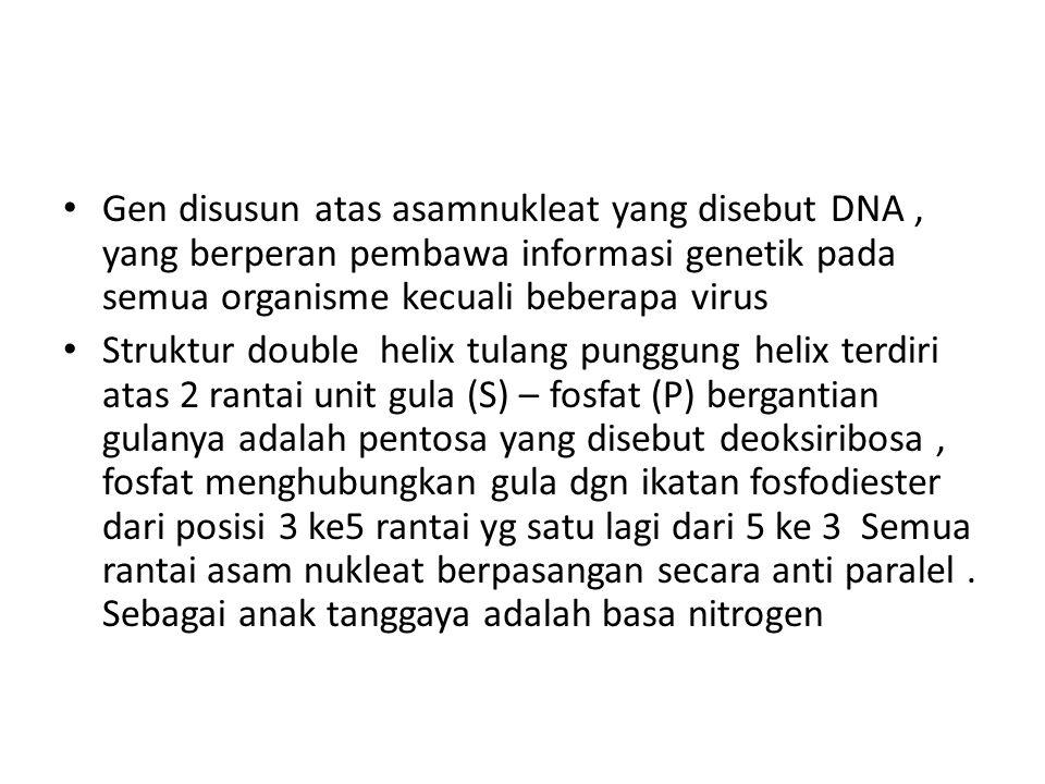 Gen disusun atas asamnukleat yang disebut DNA , yang berperan pembawa informasi genetik pada semua organisme kecuali beberapa virus