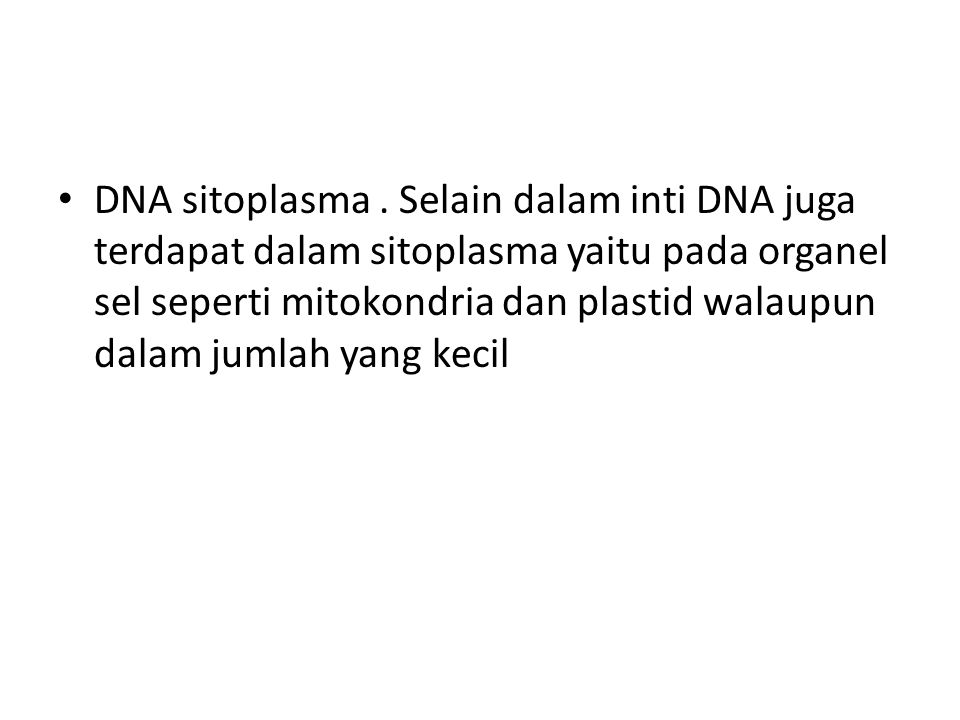DNA sitoplasma .