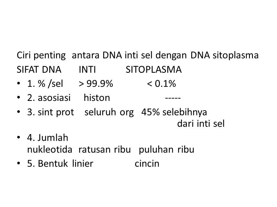 Ciri penting antara DNA inti sel dengan DNA sitoplasma