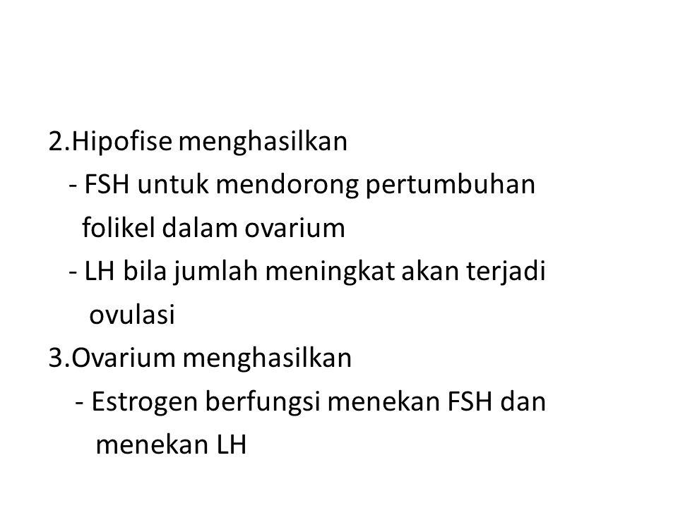 2.Hipofise menghasilkan - FSH untuk mendorong pertumbuhan folikel dalam ovarium - LH bila jumlah meningkat akan terjadi ovulasi 3.Ovarium menghasilkan - Estrogen berfungsi menekan FSH dan menekan LH