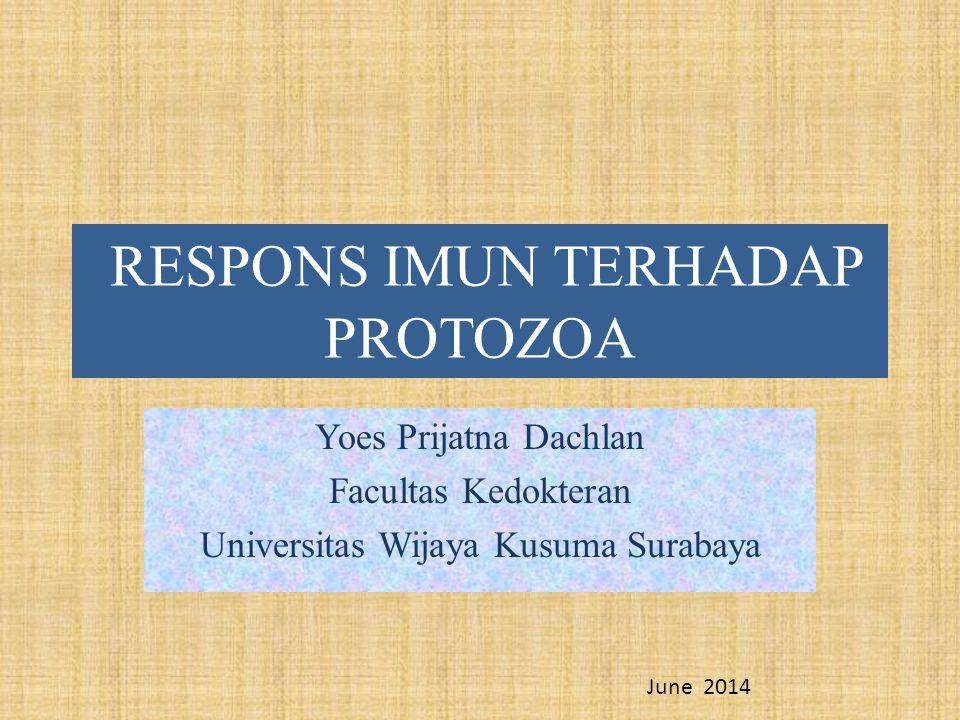 RESPONS IMUN TERHADAP PROTOZOA