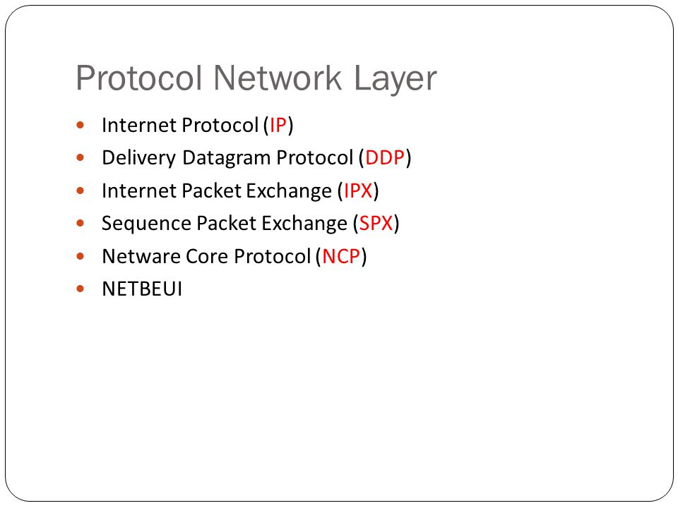 Protocol Network Layer