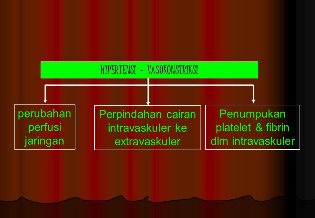HIPERTENSI - VASOKONSTRIKSI