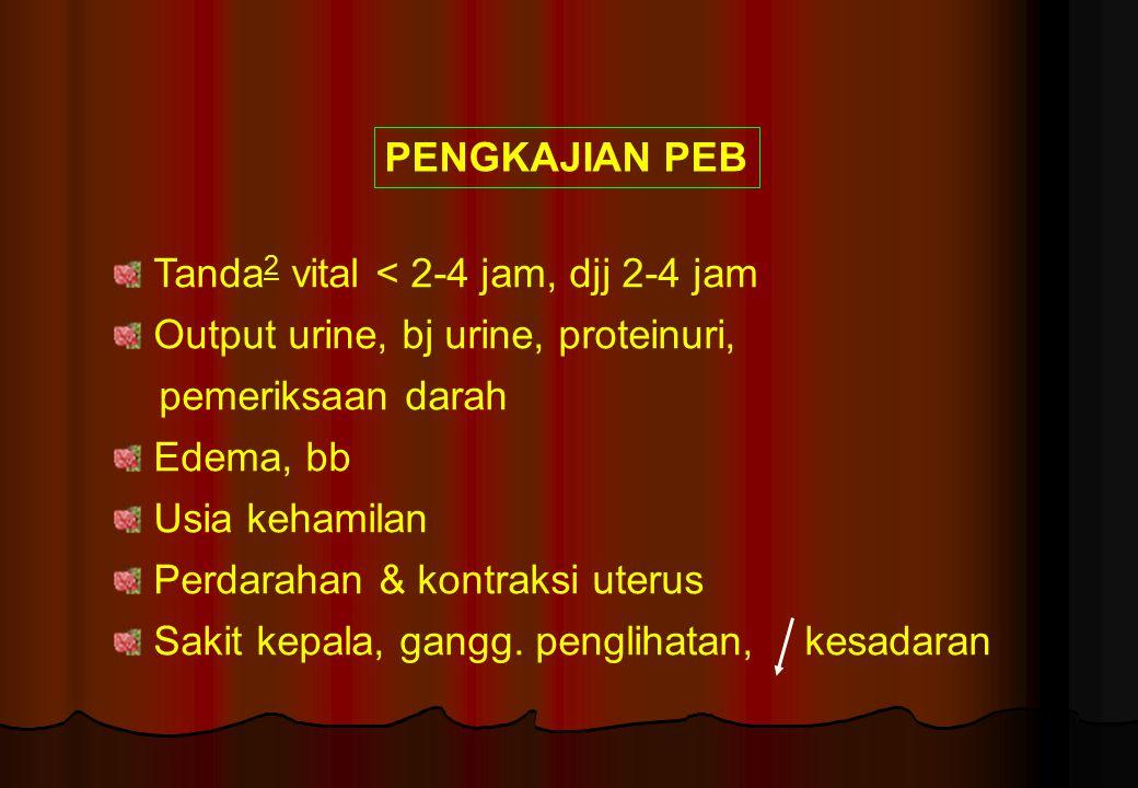 PENGKAJIAN PEB Tanda2 vital < 2-4 jam, djj 2-4 jam. Output urine, bj urine, proteinuri, pemeriksaan darah.