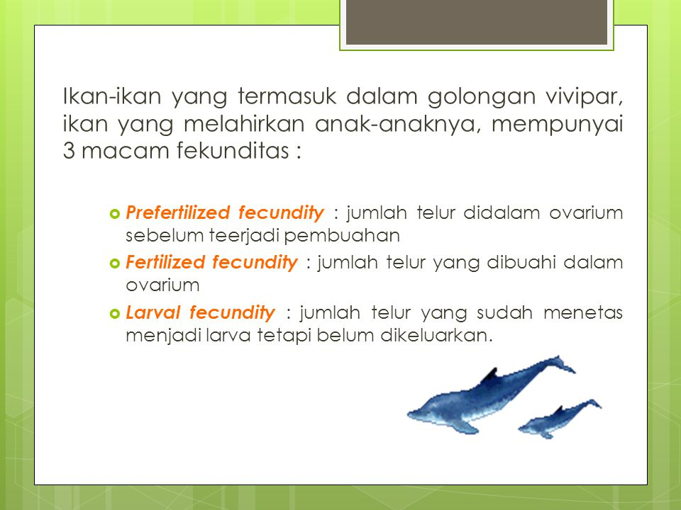 Ikan-ikan yang termasuk dalam golongan vivipar, ikan yang melahirkan anak-anaknya, mempunyai 3 macam fekunditas :