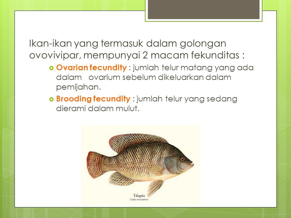Ikan-ikan yang termasuk dalam golongan ovovivipar, mempunyai 2 macam fekunditas :