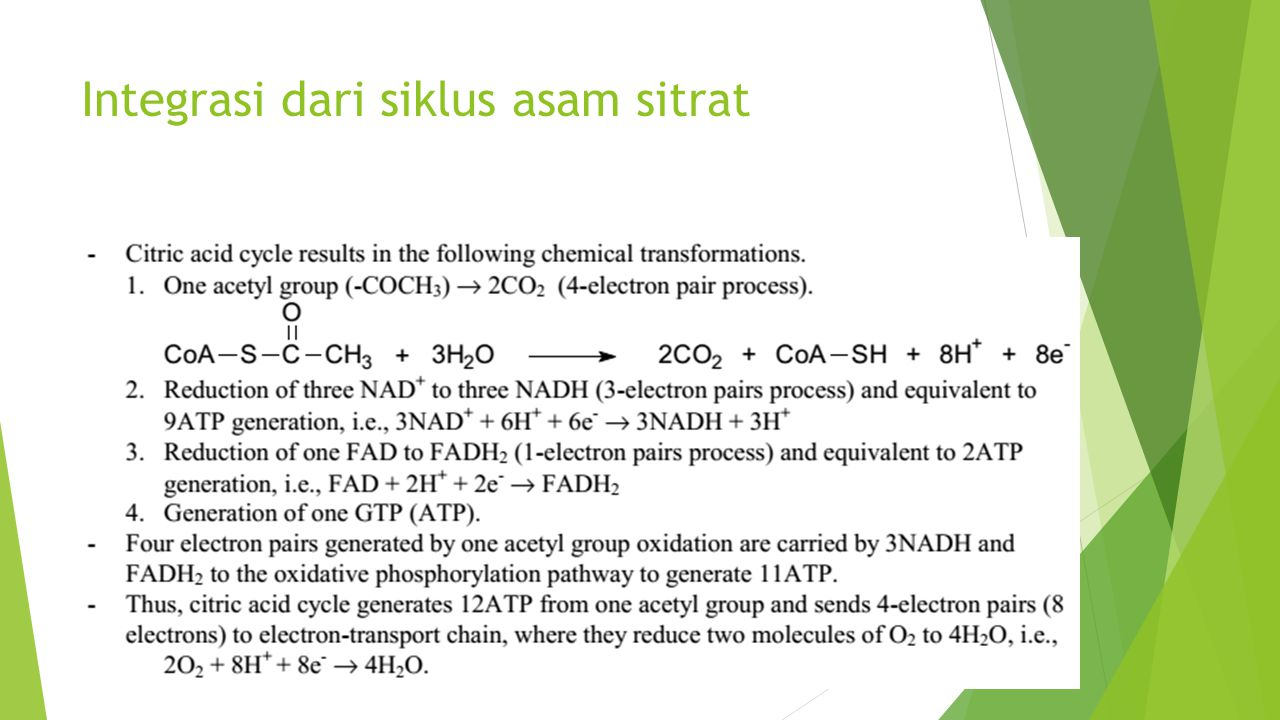 Integrasi dari siklus asam sitrat