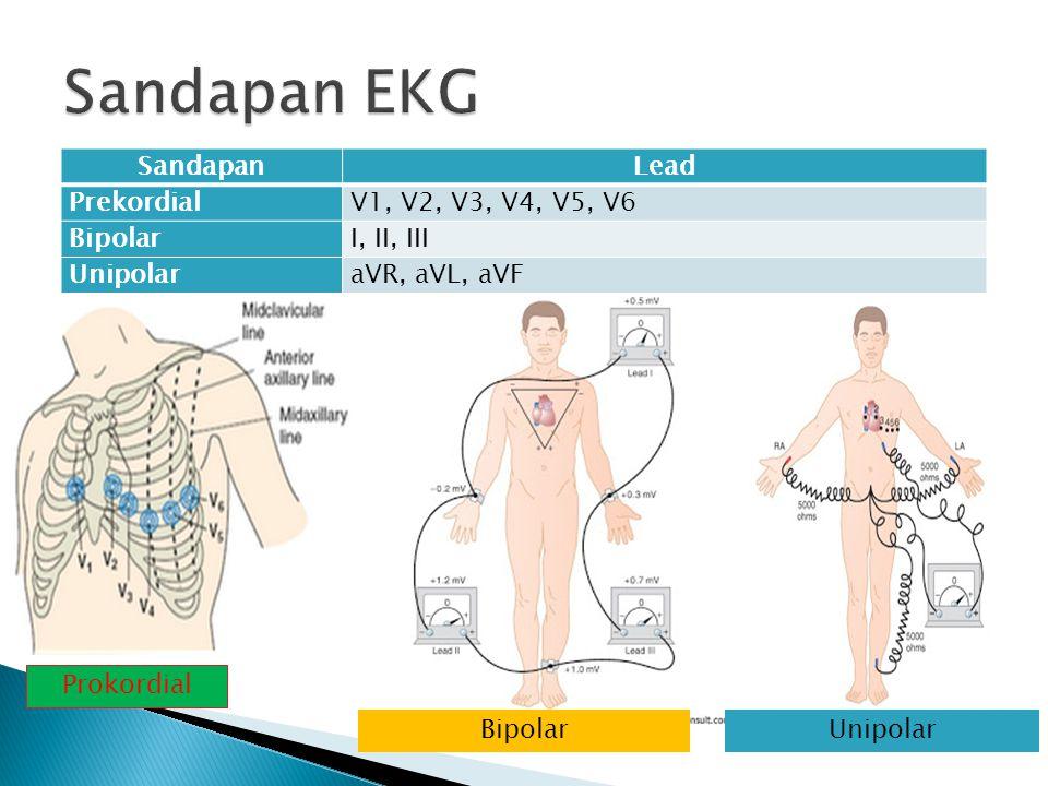 Sandapan EKG Sandapan Lead Prekordial V1, V2, V3, V4, V5, V6 Bipolar