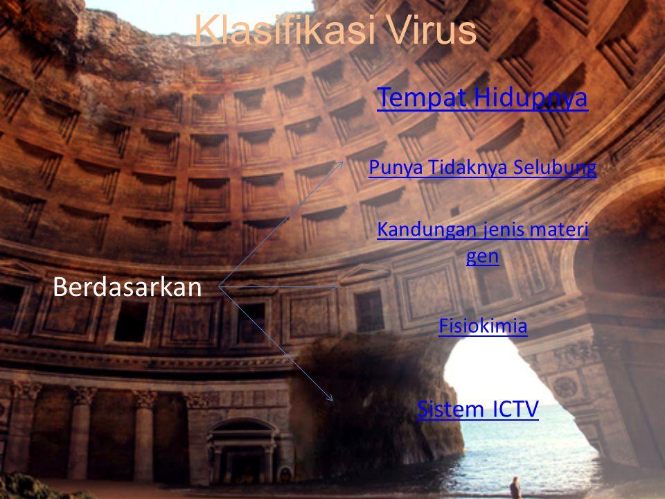 Klasifikasi Virus Tempat Hidupnya Berdasarkan Sistem ICTV