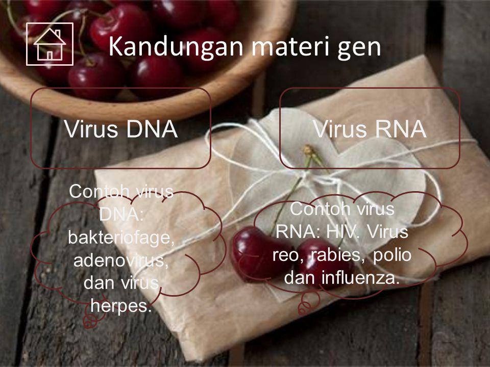 Kandungan materi gen Virus DNA Virus RNA
