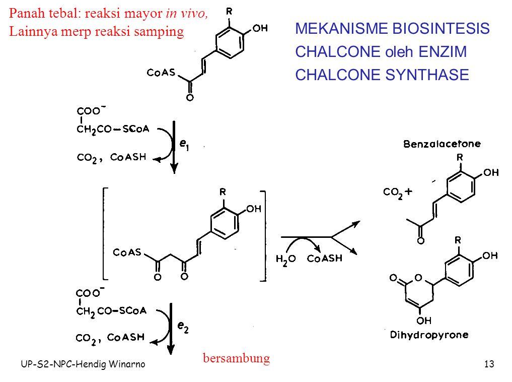 MEKANISME BIOSINTESIS CHALCONE oleh ENZIM CHALCONE SYNTHASE