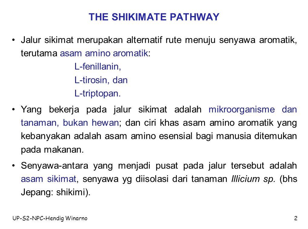 THE SHIKIMATE PATHWAY Jalur sikimat merupakan alternatif rute menuju senyawa aromatik, terutama asam amino aromatik: