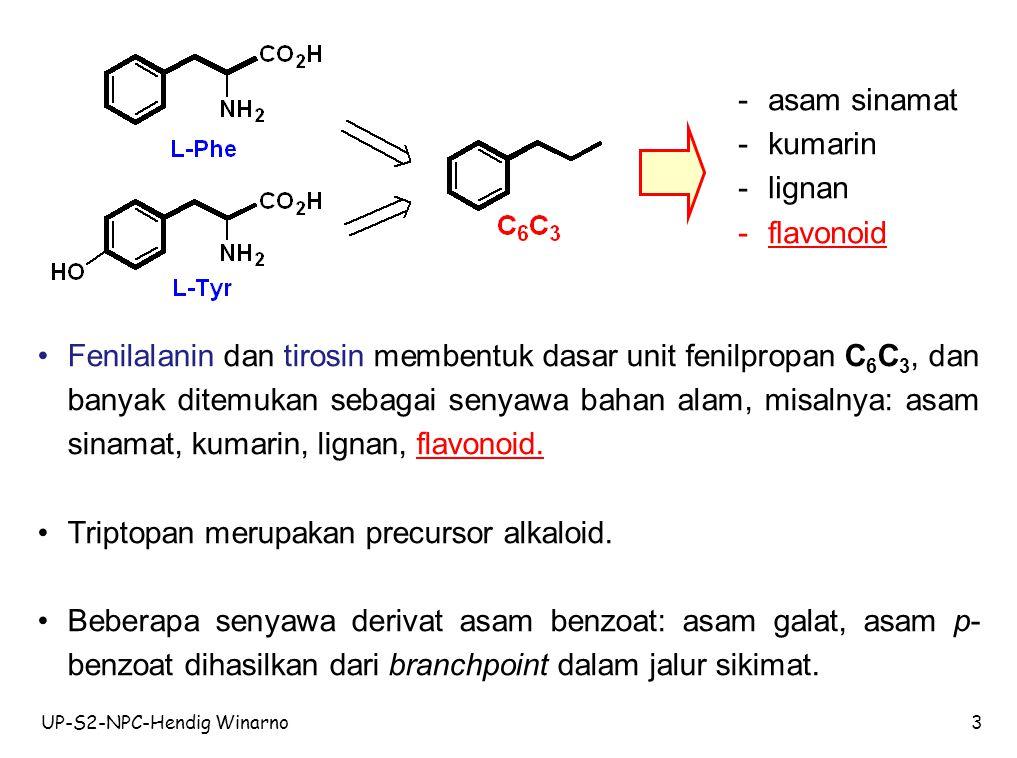 Triptopan merupakan precursor alkaloid.