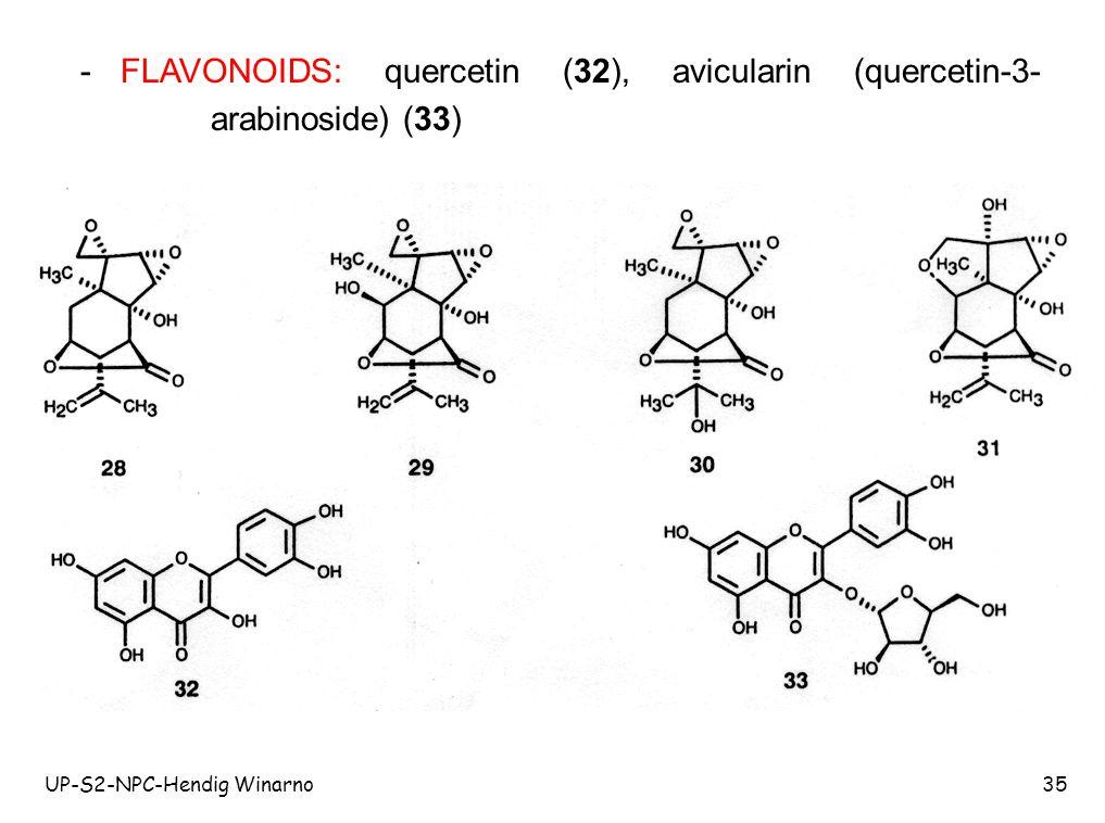 - FLAVONOIDS: quercetin (32), avicularin (quercetin-3-arabinoside) (33)