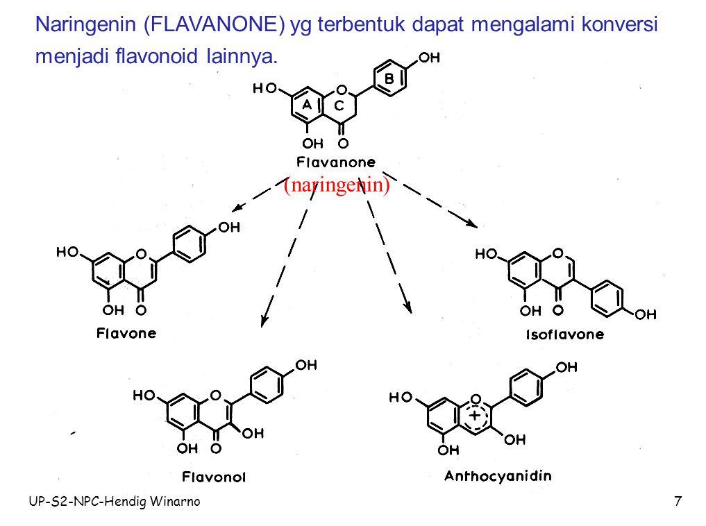 Naringenin (FLAVANONE) yg terbentuk dapat mengalami konversi menjadi flavonoid lainnya.
