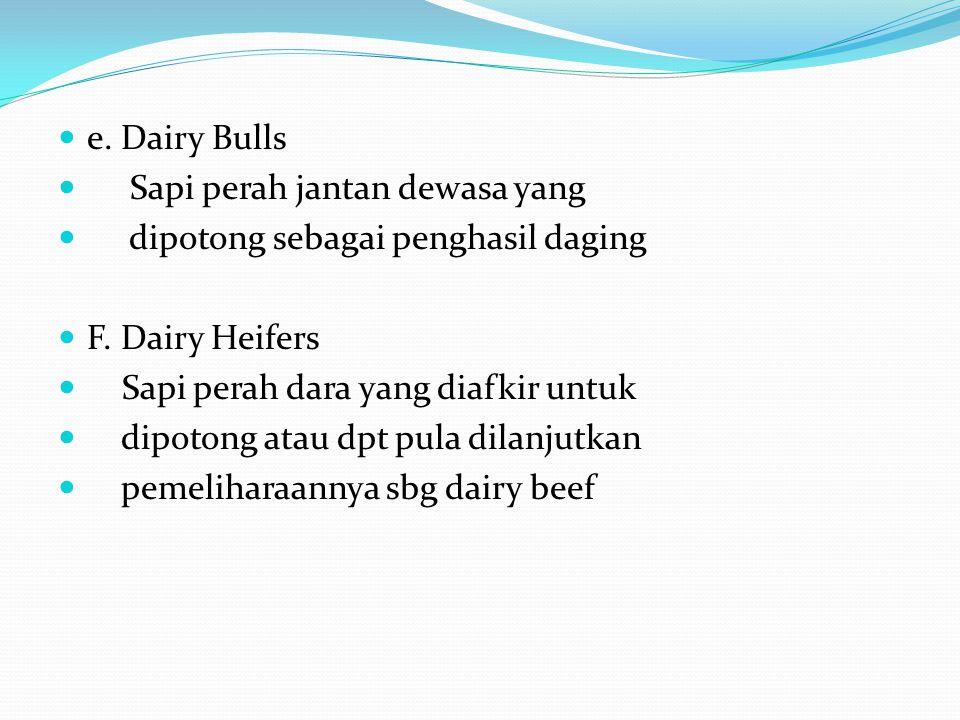 e. Dairy Bulls Sapi perah jantan dewasa yang. dipotong sebagai penghasil daging. F. Dairy Heifers.