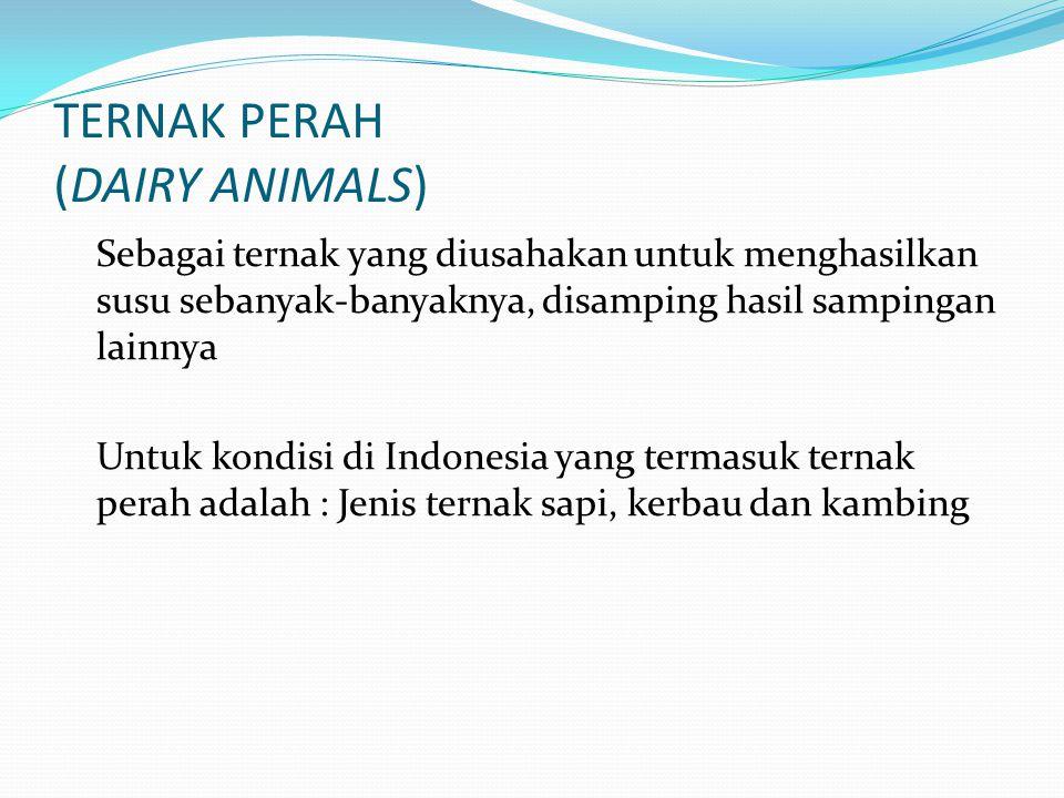 TERNAK PERAH (DAIRY ANIMALS)