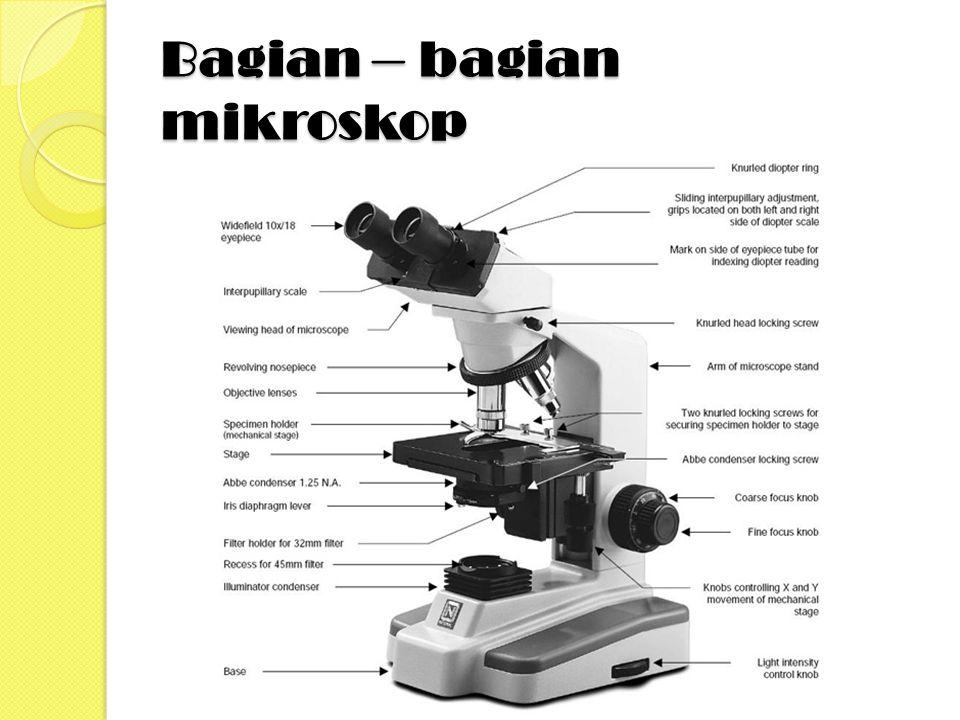 Bagian – bagian mikroskop