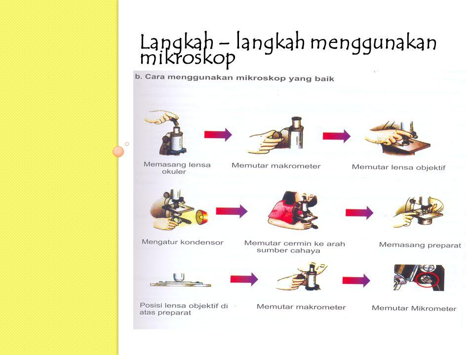 Langkah – langkah menggunakan mikroskop