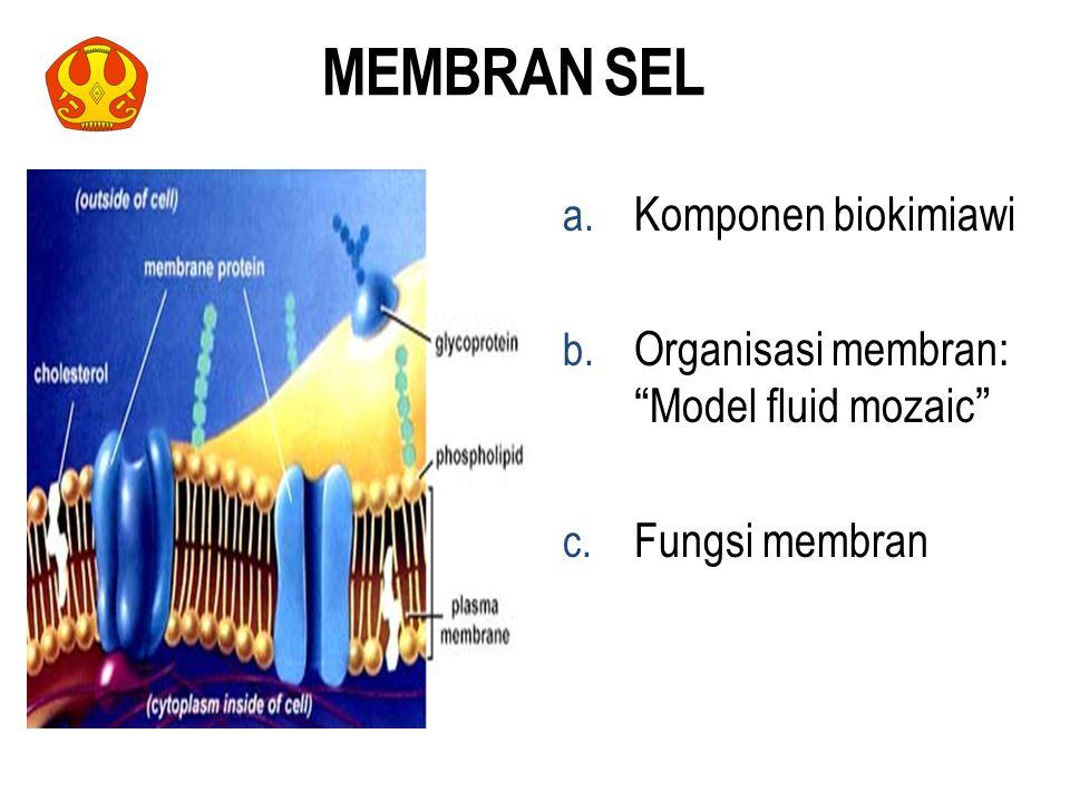 MEMBRAN SEL Komponen biokimiawi