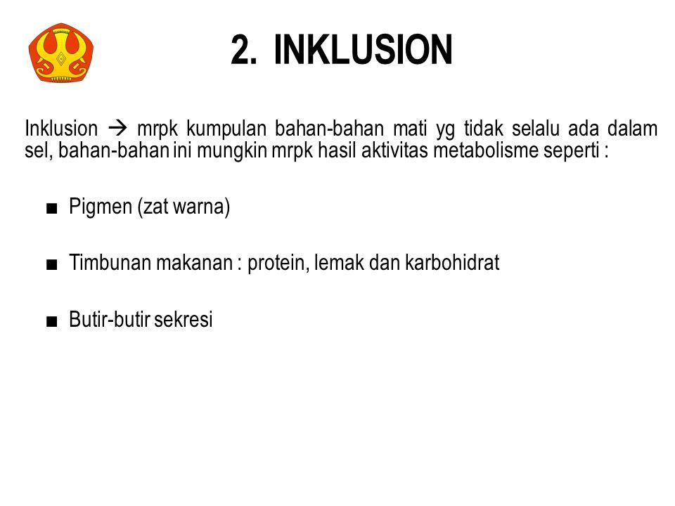 2. INKLUSION