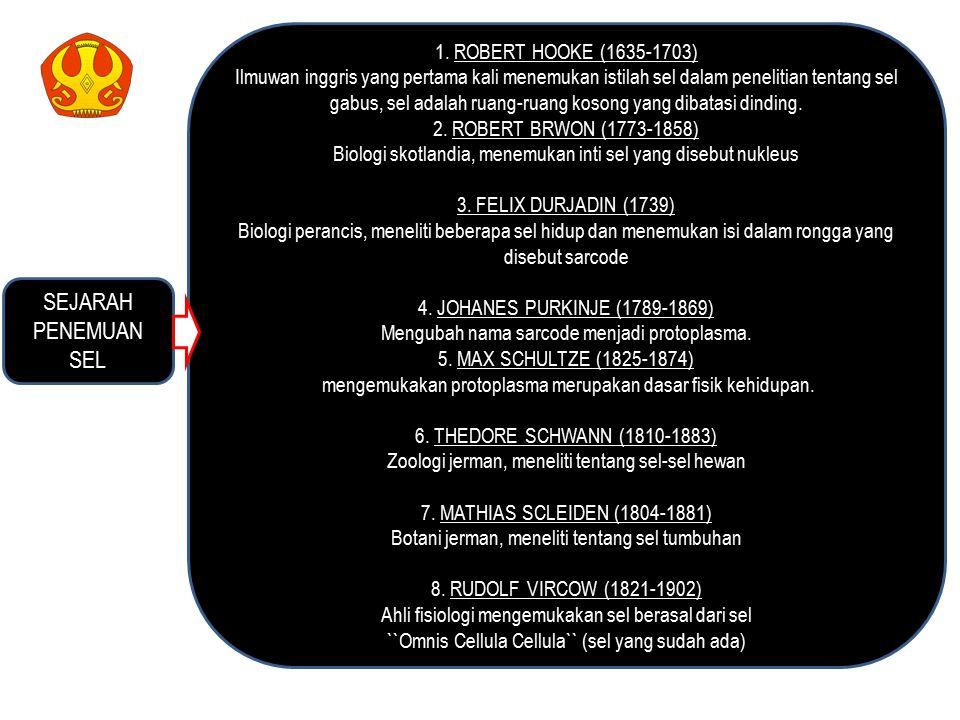 SEJARAH PENEMUAN SEL 1. ROBERT HOOKE (1635-1703)