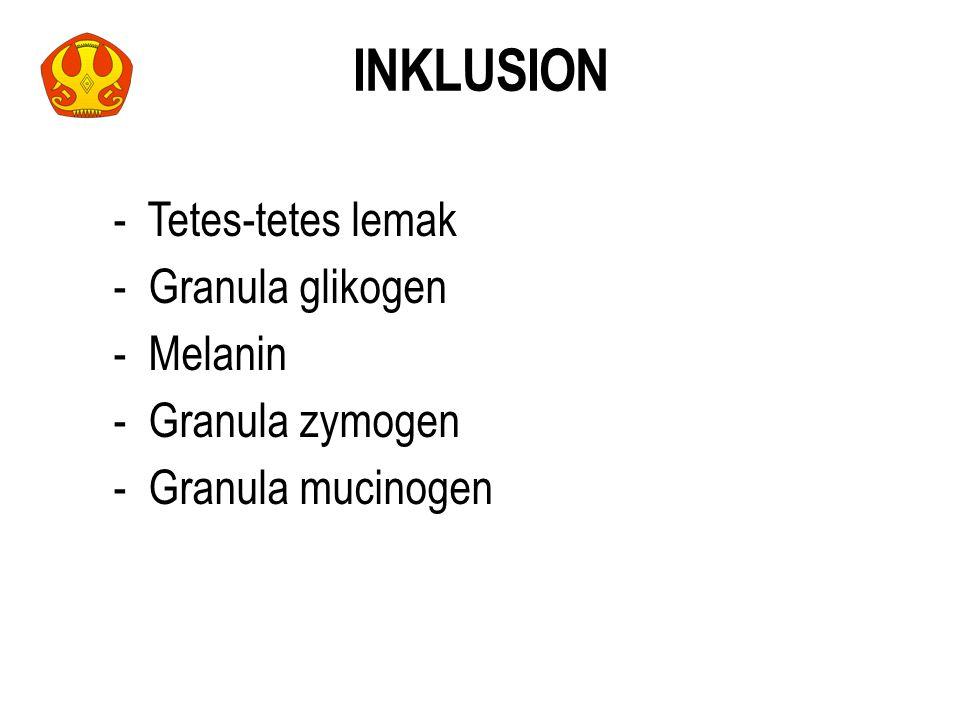 INKLUSION - Tetes-tetes lemak - Granula glikogen - Melanin