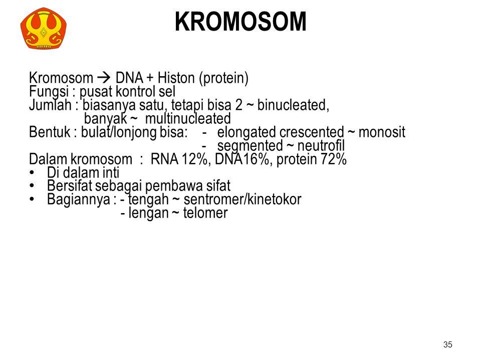 KROMOSOM Kromosom  DNA + Histon (protein) Fungsi : pusat kontrol sel