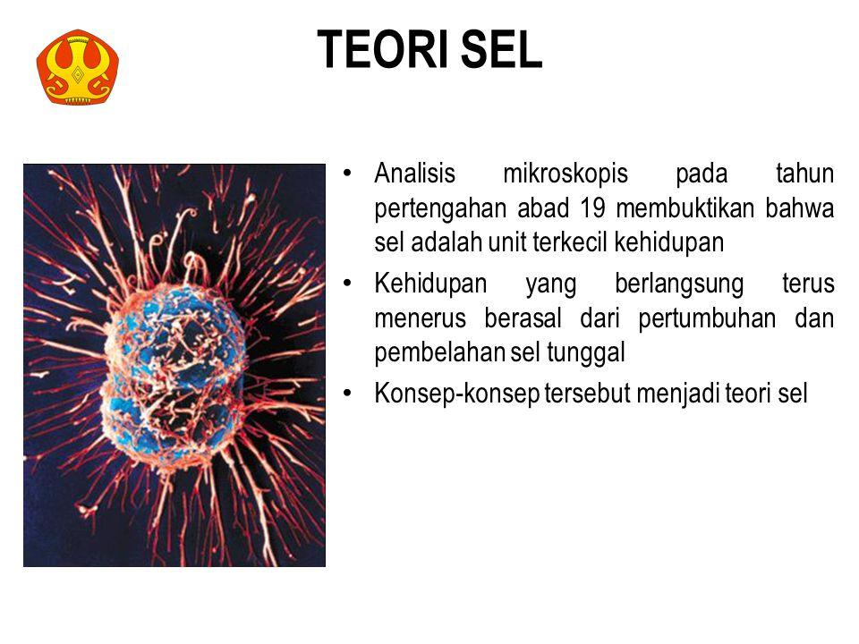 TEORI SEL Analisis mikroskopis pada tahun pertengahan abad 19 membuktikan bahwa sel adalah unit terkecil kehidupan.