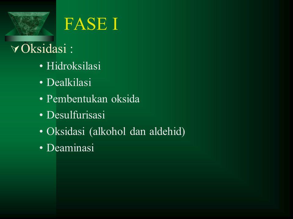 FASE I Oksidasi : Hidroksilasi Dealkilasi Pembentukan oksida