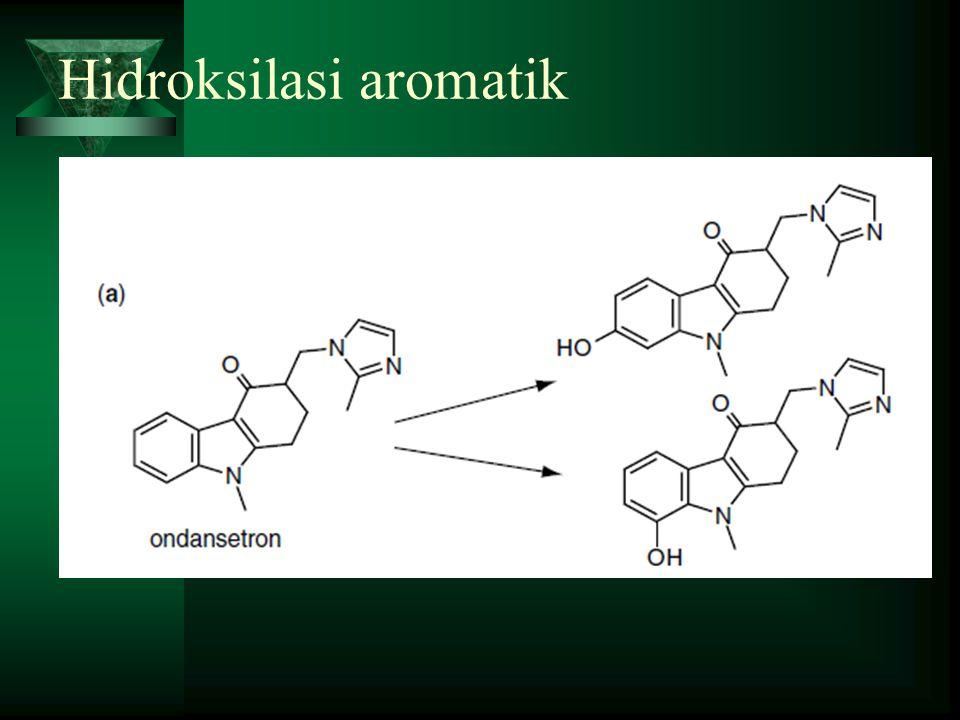 Hidroksilasi aromatik