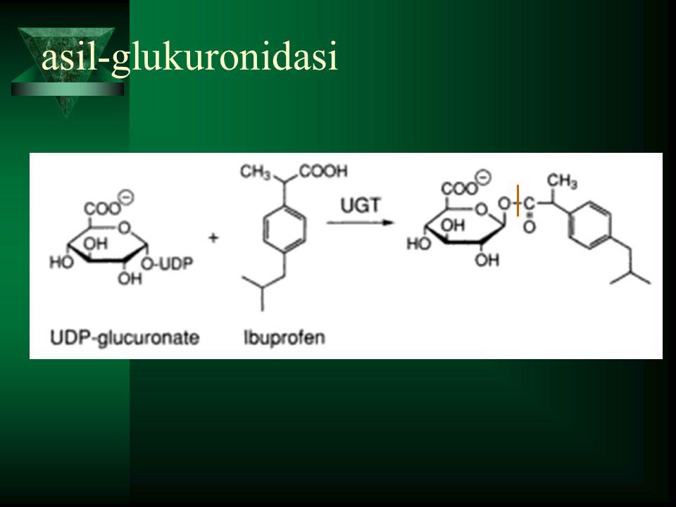 asil-glukuronidasi