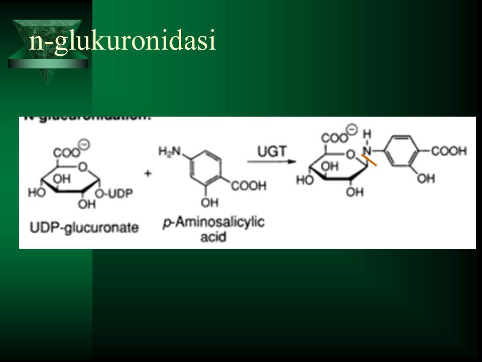 n-glukuronidasi