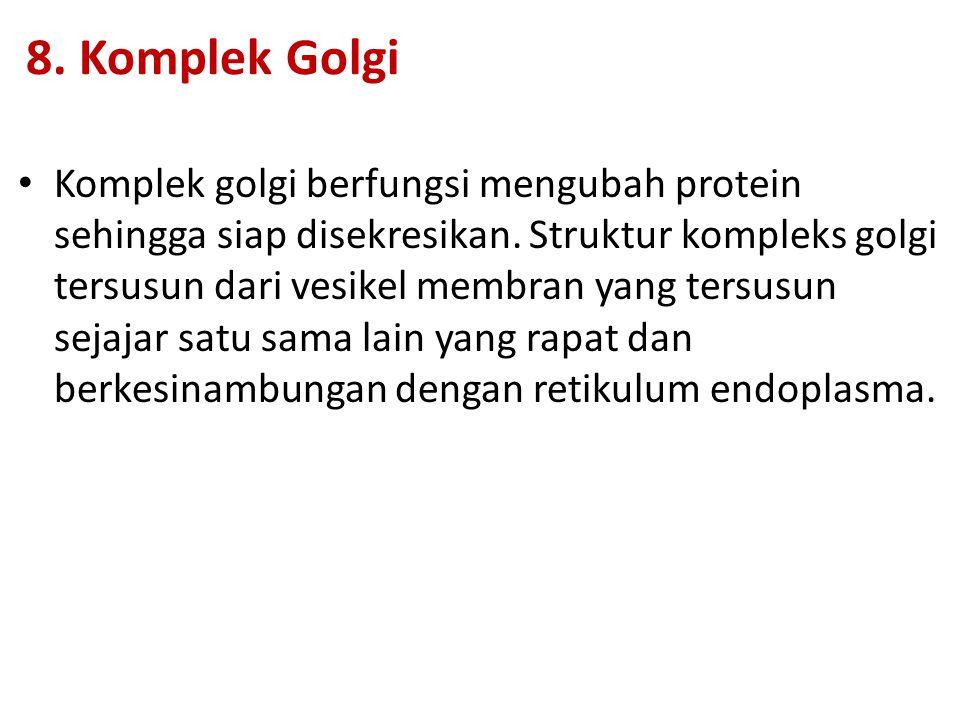 8. Komplek Golgi