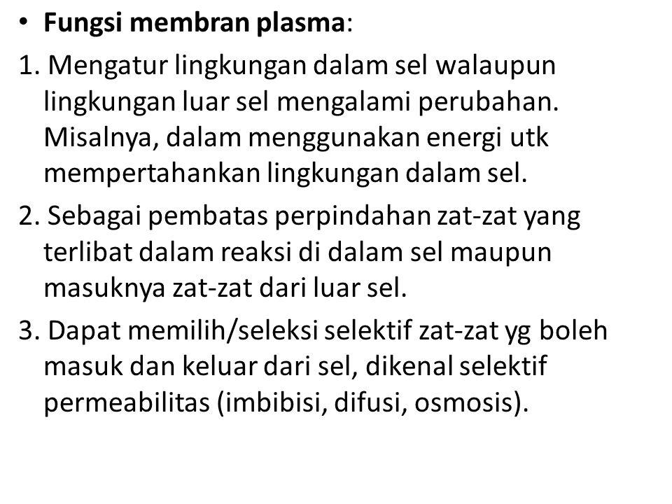 Fungsi membran plasma: